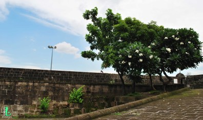 Park inside Intramuros, climbing through the walls give you a perfect landsacpe of Manila's bustling city